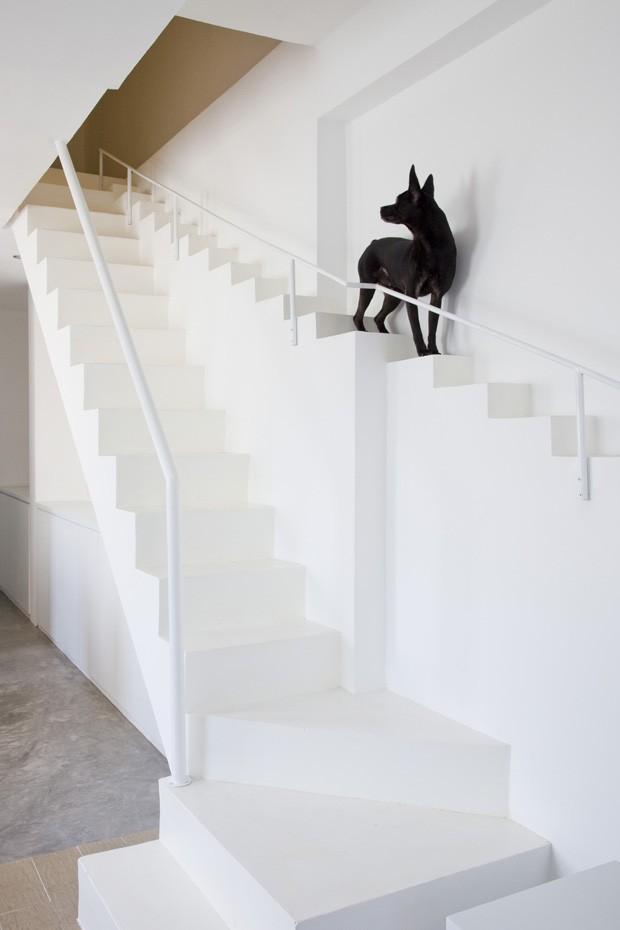 """Esta casa no Vietnã tem uma escada alternativa para que os cães possam subir e descer sem muito esforço ou perigo. O projeto, na """"escala animal"""" tem os mesmos materiais que a escada."""
