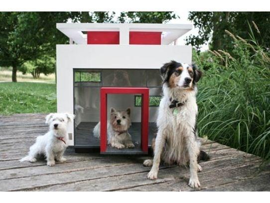 Casinha Cubix da Best Friends tem um design arrojado, que enfeita qualquer jardim!!