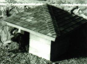 A casa construída nos anos 60 por Jim com o projeto de Frank Lloyd de 1956. E o labrador de Jim Berger.