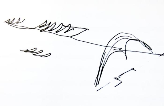 A Marques de Sapucaí (Passarela Professor Darcy Ribeiro), palco do maior espetáculo da terra, projetada pelo inesquecível Oscar Niemeyer foi inaugurada em 1984 e teve como premissas do projeto um lugar permanente onde pudesse ocorrer os desfiles das escolas de samba. Para não ficar ociosa durante todo o resto do ano, o projeto incluiu escolas da rede pública em toda a sua extensão (os chamados Brizolões). A proposta era a de se ter escolas interligadas, com paredes que não iriam até o teto para integração das matérias e alunos. Ao longo do tempo, este projeto não deu certo na prática e foi remodelado.