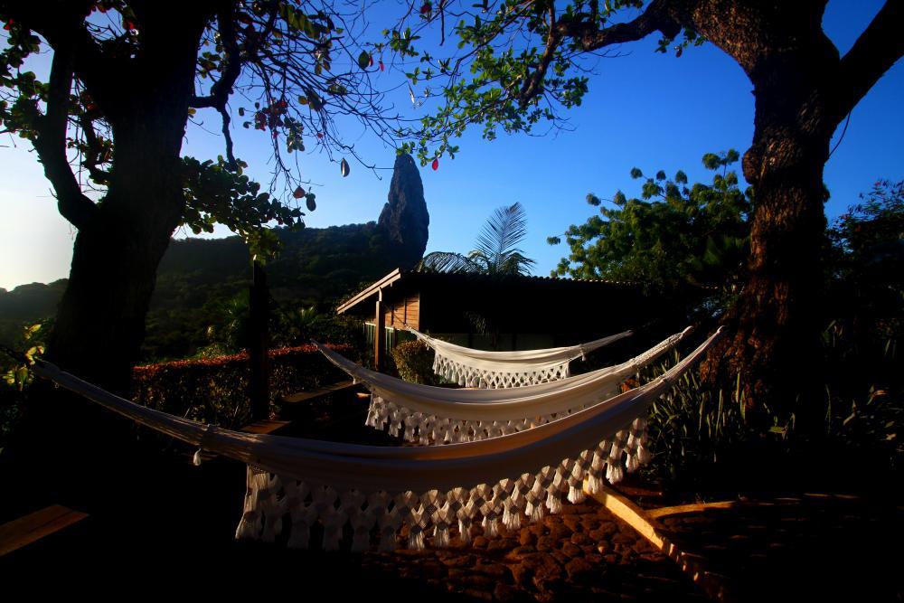 As redes esticadas entre as árvores: integração com a natureza.