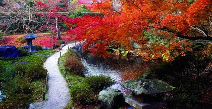 Jardim Japones: composicao dos elementos principais