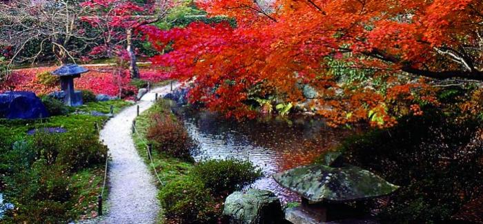 Jardim Japonês: Zen, art e meditação