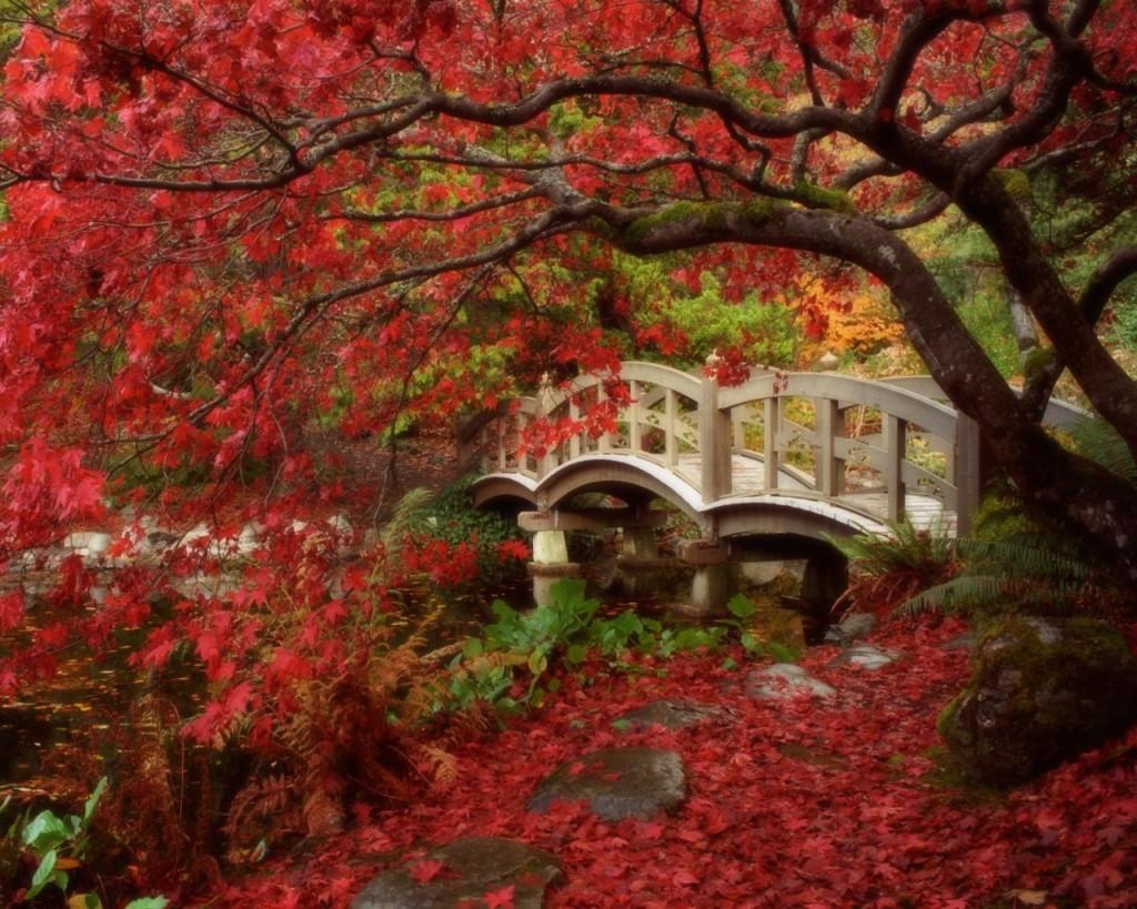 Taiko Bashi ou ponte