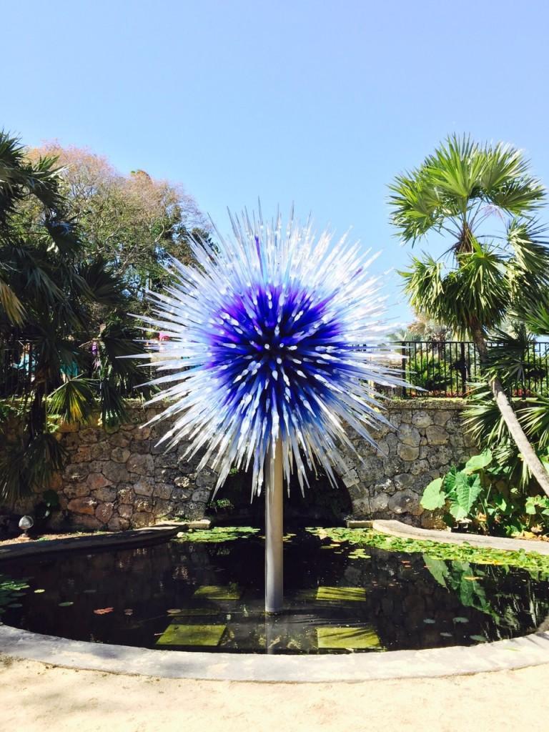 Saphire Star - 2010 no FairChild Botanical Garden, em Miami